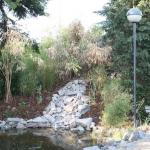 Der Wassergarten